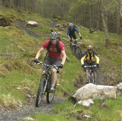 Wolftrax-Newtonmore, scottish highlands, monarch of the glen, highland accommodation, aviemore, cairngorm national park, scottish holiday.