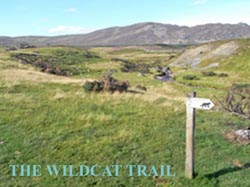 Wildcat_TrailAugust_2010_for_n